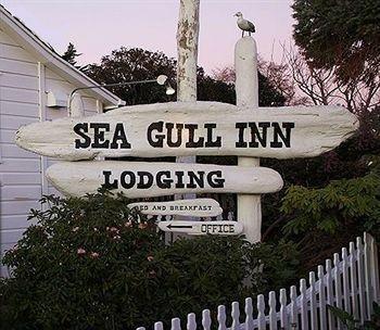 фото Sea Gull Inn 693544739