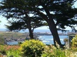 фото Agate Cove Inn 693546538