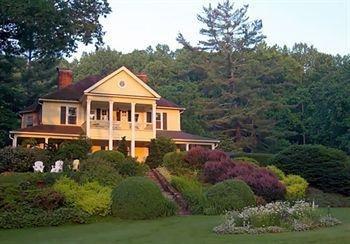 фото The Yellow House 693548386