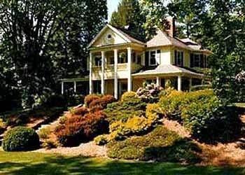 фото The Yellow House 693548388