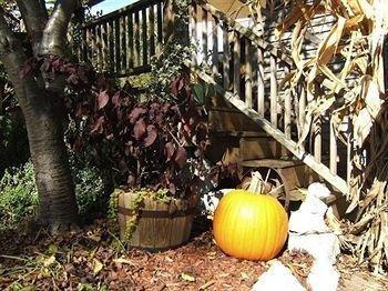 фото Boyden House Inn B&B 693548469