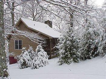 фото Fire Mountain Inn Cabins & Treehouses 693550301