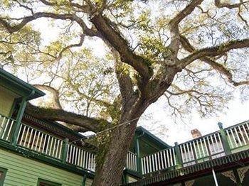 фото Florida House Inn 693591414