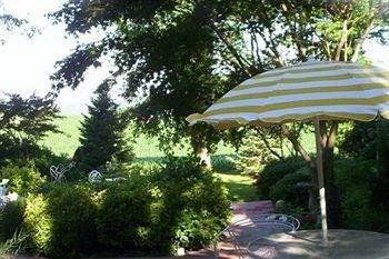 фото Yellow Turtle Inn 693617567