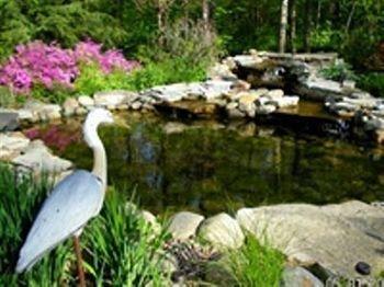 фото Whispering Oaks Bed & Breakfast 693618937