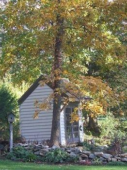 фото Forest Hill Inn 693637629
