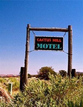 фото Cactus Hill Motel 699736181