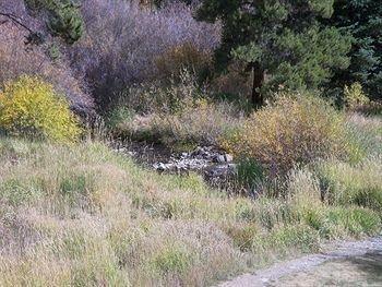 фото Rocky Mountain Resort Management Breckenridge 728244653