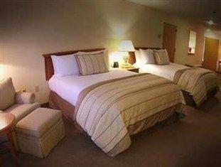 фото Hilton Hotel 761901857