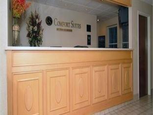 фото Comfort Suites Mount Pleasant Hotel 762327014