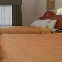 фото Comfort Suites Fort Pierce 769476865