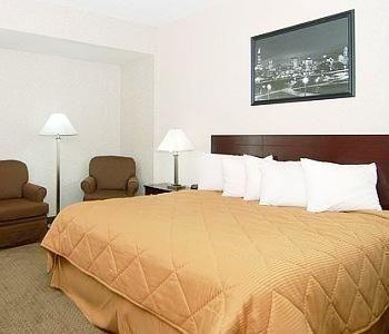 фото Comfort Inn Des Plaines 769499341