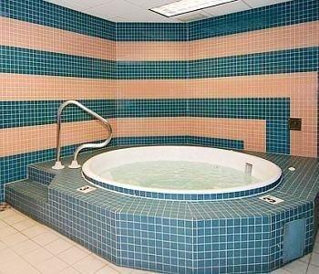 фото Comfort Inn Des Plaines 769499343