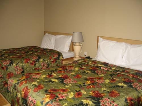 фото Satellite Motel 775339660