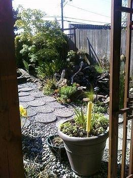 фото The Secret Garden Bed & Breakfast 806980076