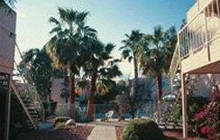 фото Flamingo Suites Tucson 83137345