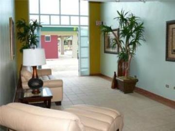 фото Hotel Treasure Island 846562264