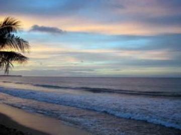 фото Yunque Mar Beach Hotel 846566690