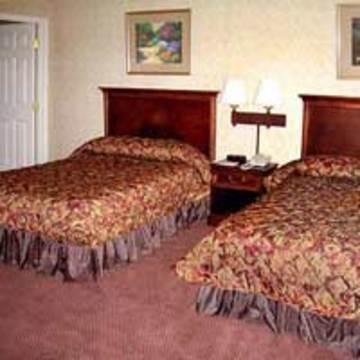 фото Arcadia Residential Suites 847063624