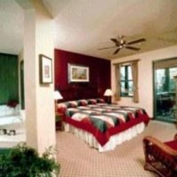 фото Disney Hilton Head 847120506